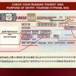 Check-Russian-visa-data